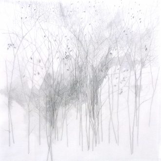 <strong>ARBORETUM2 </strong>, pencil on tracing  77x77cms (framed)