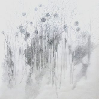 <strong>ARBORETUM3 </strong>, pencil on tracing 77x77cms (framed)