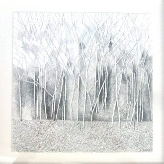 <strong>TREES3 </strong>, pencil 33x33cms(framed)